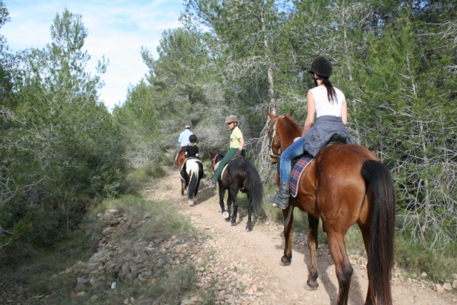 Horse riding - Rent a Bungalow in Alicante